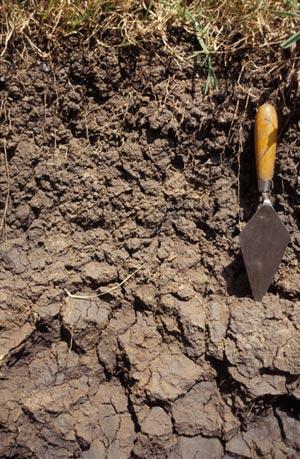 soil_prop_intro